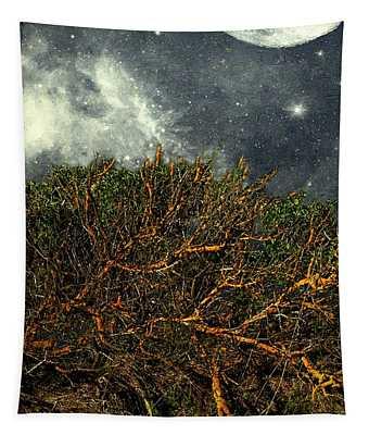 Desert Cliff Tapestry