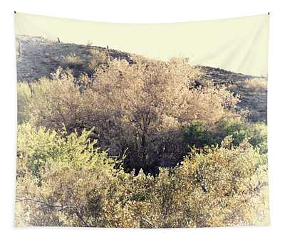 Desert Ironwood Afternoon Tapestry
