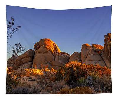 Desert Light Tapestry