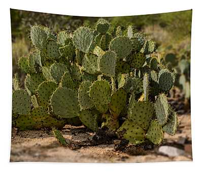 Desert Prickly-pear No6 Tapestry