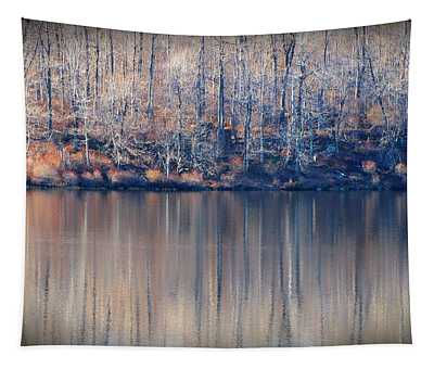 Desolate Splendor Tapestry
