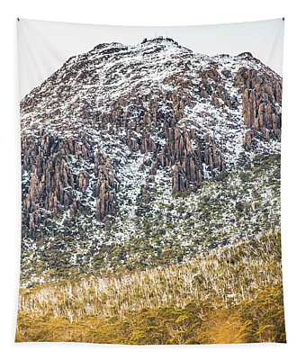 Detail On A Australian Snow Covered Mountain Tapestry