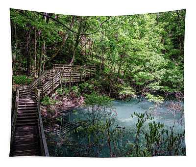 Devil's Millhopper Gainesville Fl II Tapestry