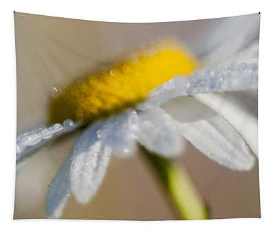 Dew On A Daisy Tapestry
