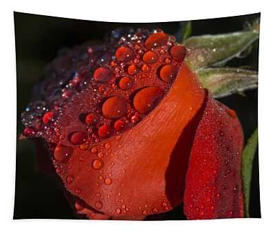Dew On Red Rose Tapestry