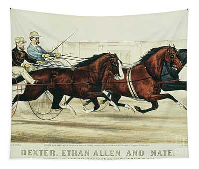 Horse And Buggy Wall Tapestries