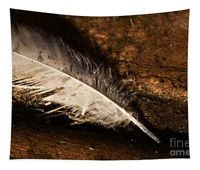 Discarded Feather Tapestry