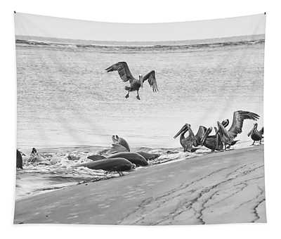 Dolphin And Pelican Party Tapestry