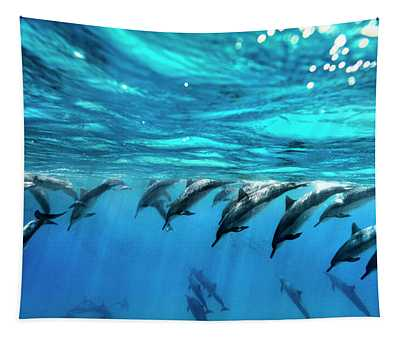 Dolphin Dive Tapestry
