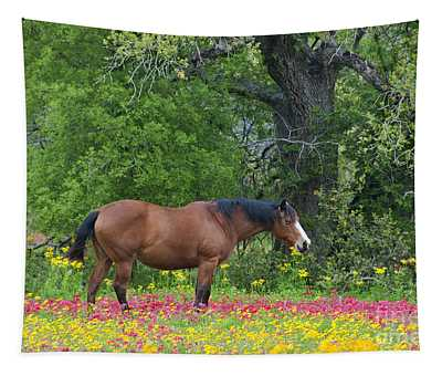 Domestic Horse In Field Of Wildflowers Tapestry