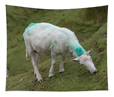 Donegal Sheep 4439 Tapestry