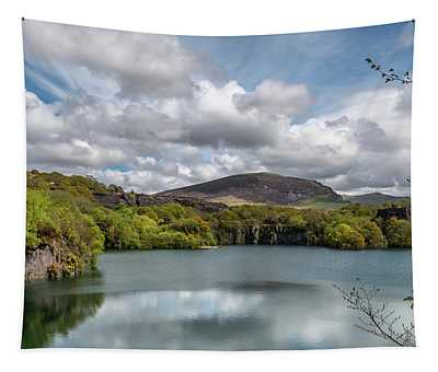 Dorothea Quarry Tapestry