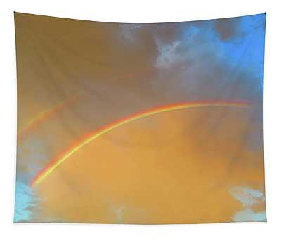 Double Rainbows In The Desert Tapestry