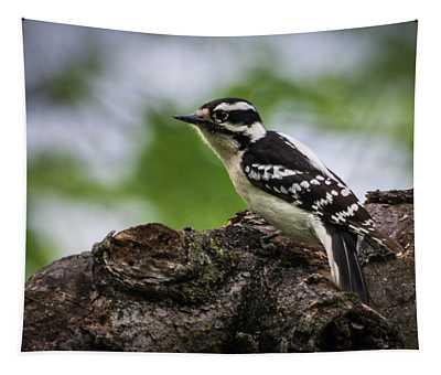Downy Woodpecker Tapestry