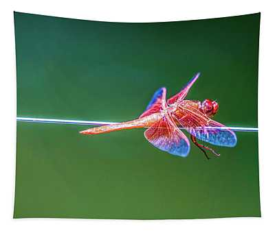 Dragon Resting Tapestry