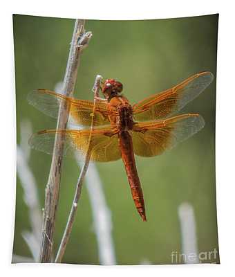 Dragonfly 10 Tapestry