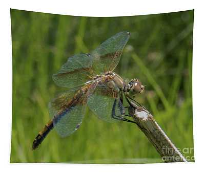 Dragonfly 8 Tapestry