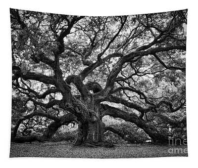 Dramatic Angel Oak In Black And White Tapestry