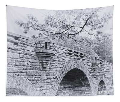 Duck Brook Bridge In Black And White Tapestry
