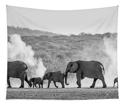 Dusty March Tapestry