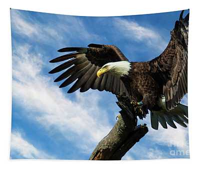 Eagle Landing On A Branch Tapestry