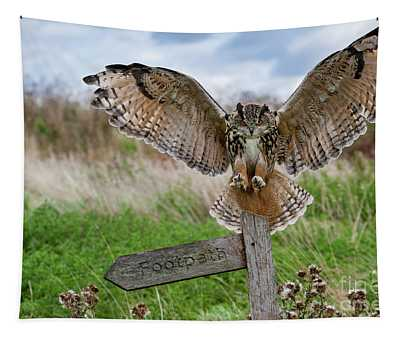 Eagle Owl On Signpost Tapestry