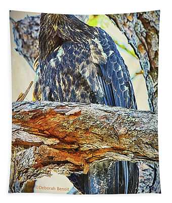 Eagle Series Tree Baby Tapestry