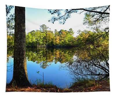 Early Fall Reflections Tapestry