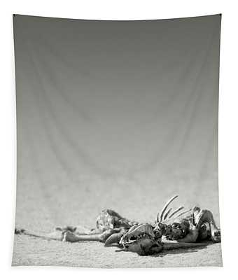 Eland Skeleton In Desert Tapestry