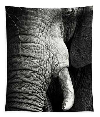 Elephant Close-up Portrait Tapestry