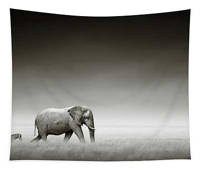 Elephant With Zebra Tapestry