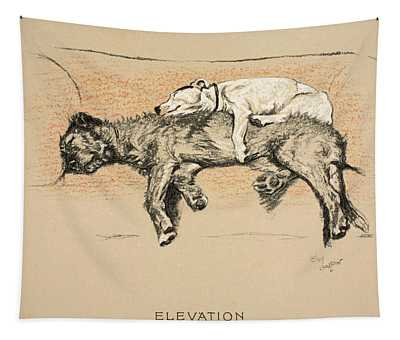 Elevation Tapestry