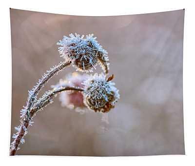 Encrusted Tapestry