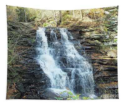 Erie Falls 3 - Ricketts Glen Tapestry