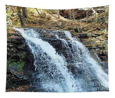 Erie Falls - Ricketts Glen Tapestry
