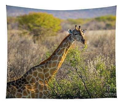 Etosha Giraffe Tapestry