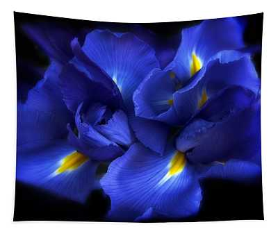 Tapestry featuring the photograph Evening Iris by Jessica Jenney