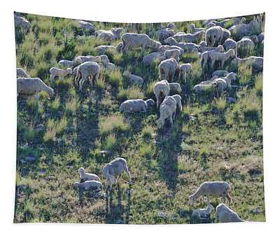 Ewes And Lambs - Original Tapestry