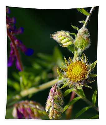 Eye Candy From The Garden Tapestry