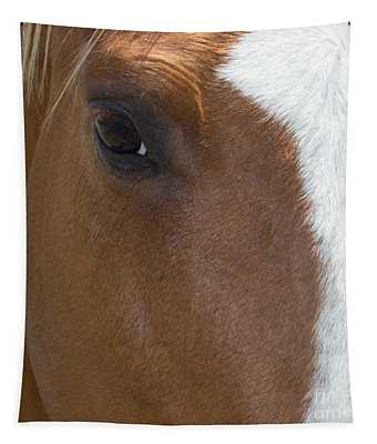 Eye On You Horse Tapestry