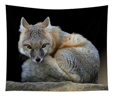 Eyes Of The Fox Tapestry