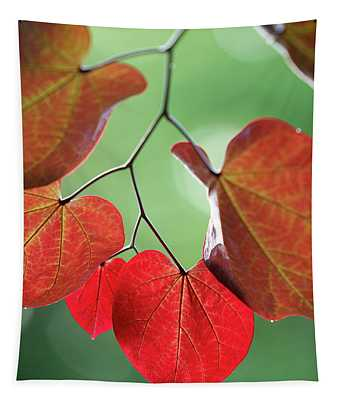 Redbud Tapestry