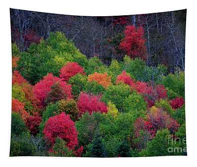 Fall Poppers Tapestry