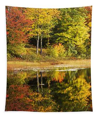 Fall Reflection Tapestry