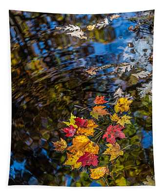 Fall Reflection - Pisgah National Forest Tapestry