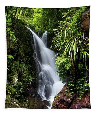 Falls Of Elabana  Tapestry