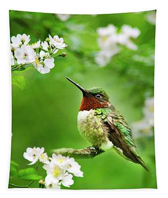 Fauna And Flora - Hummingbird With Flowers Tapestry