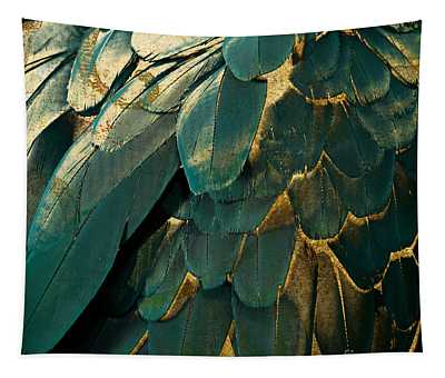 Feathers Paintings Wall Tapestries