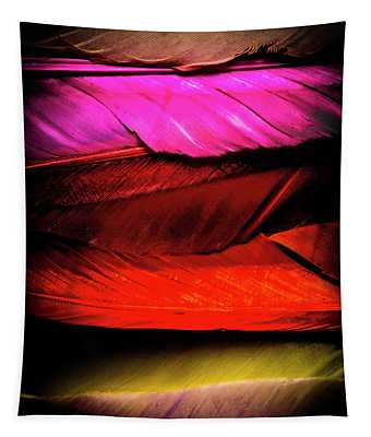 Feathers Of Rainbow Color Tapestry