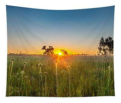 Fields Of Gold Tapestry